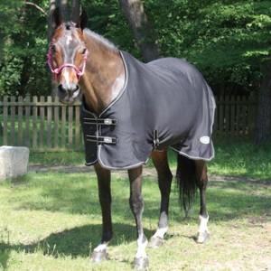 http://www.equisport.fr/1031-1951-thickbox/chemise-sechante-cheval.jpg